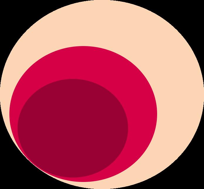 image-large-2